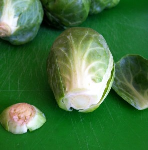 Sprouts end off