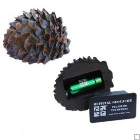 A Pinecone! (worldcaching.com)