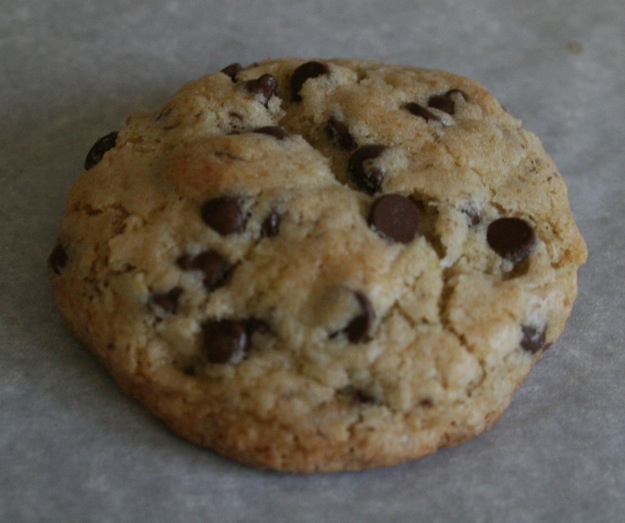 Photo of delicious, home made gluten free chocolate chip cookie.